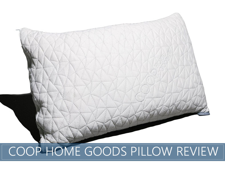 Coop Home Goods Pillow overview