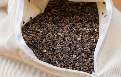 Buckwheat close-up image