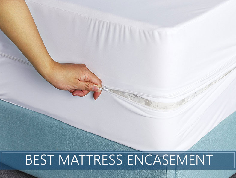 top rated mattress encasement reviews