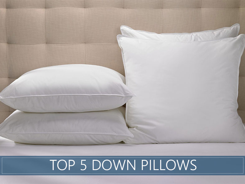 top 5 down pillows