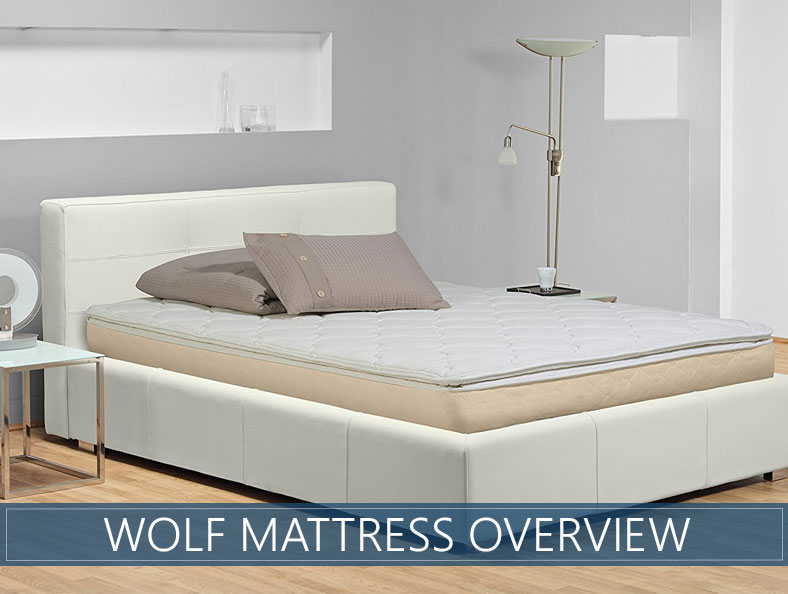 overview of wolf bed