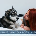 sleeping with your dog at night