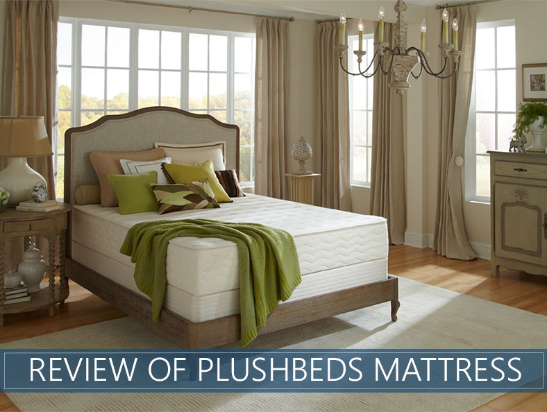 Our Review of the PlushBeds Mattress