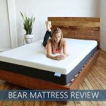 overview of bear mattress