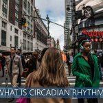 Circadian Rhythm Explained