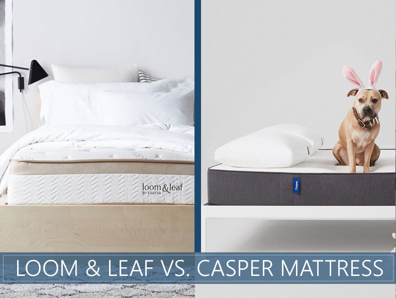 loom & leaf vs casper - which one is good for you