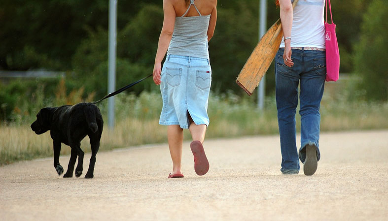two girls are walking a dog