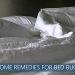 Home Remedies for Bed Bugs Image