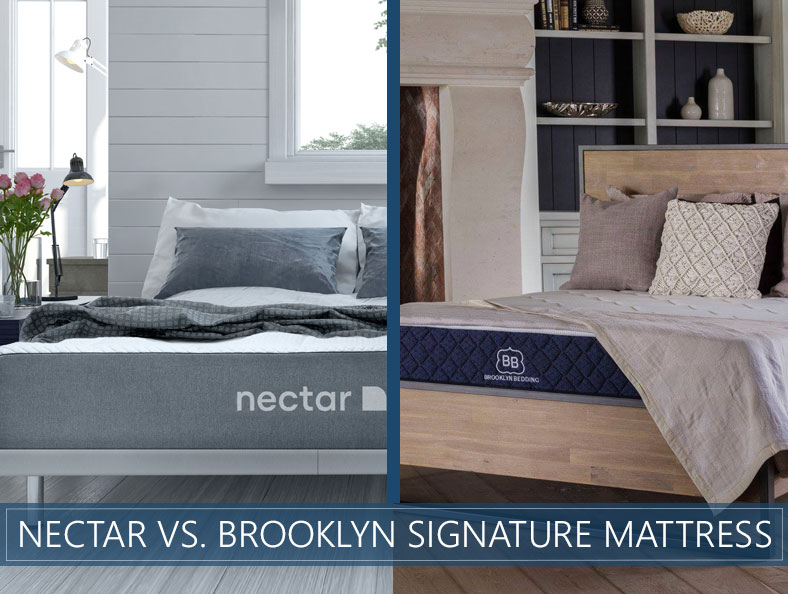 nectar vs brooklyn signature bed