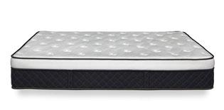 alexander signature hybrid bed image