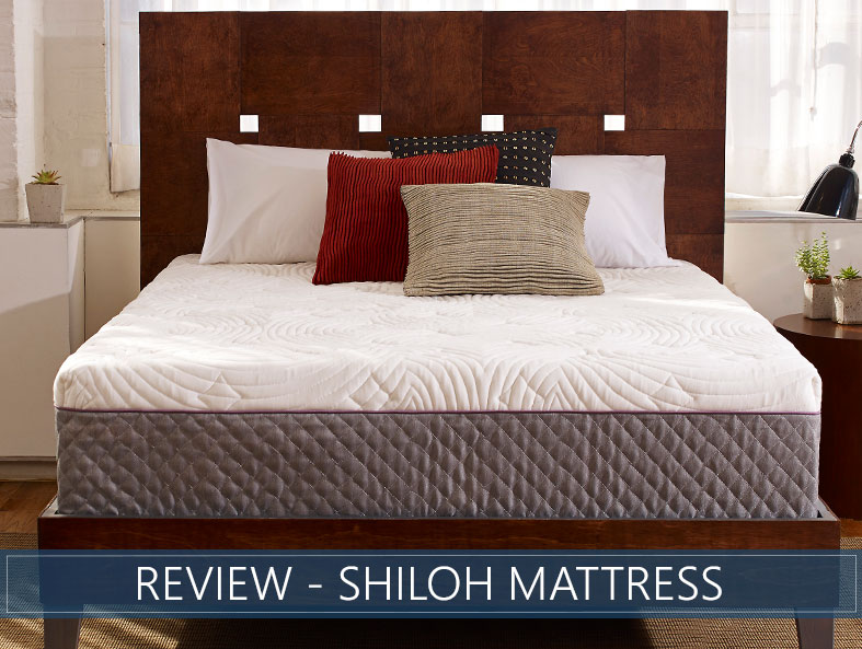 Our in depth overview of the Shiloh bed