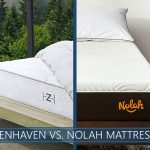 Comparison of zenhaven and nolah bed