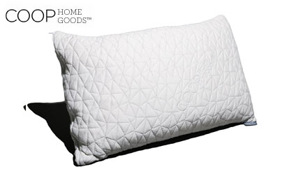 product image of coop home goods model