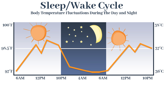 Body Temperature Fluctuations Graph