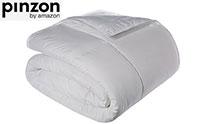 Pinzon Product Image medium