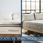our comparison of avocado and brentwood cedar