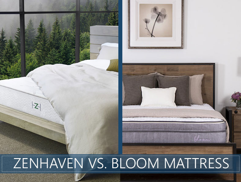 our comparison of zenhaven and bloom