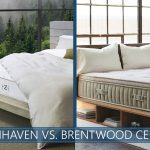 our comparison of zenhaven and cedar