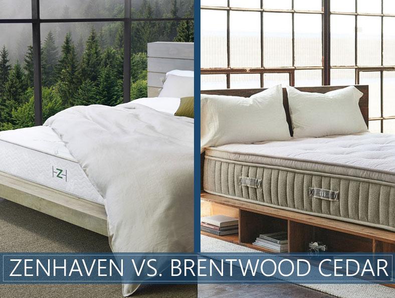 our comparison of zenhaven and cedar