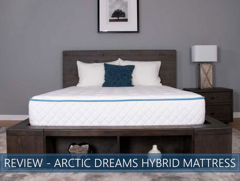 our overview of arctic dreams hybrid