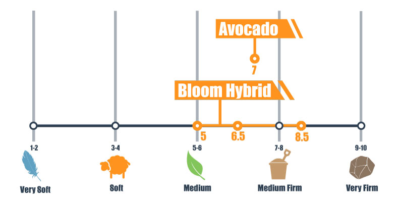 firmness scale for avocado and bloom hybrid