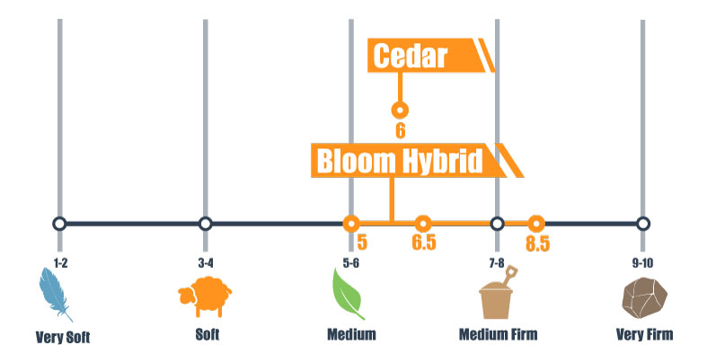 firmness scale for bloom and cedar