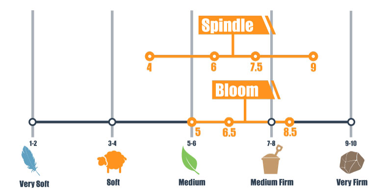 firmness scale for spindle and bloom