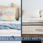 our comparison of spindle and avocado