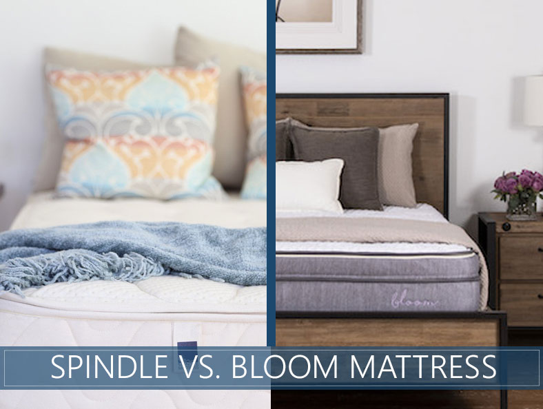 our comparison of spindle and bloom