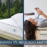 zenhaven versus avocado bed comparison