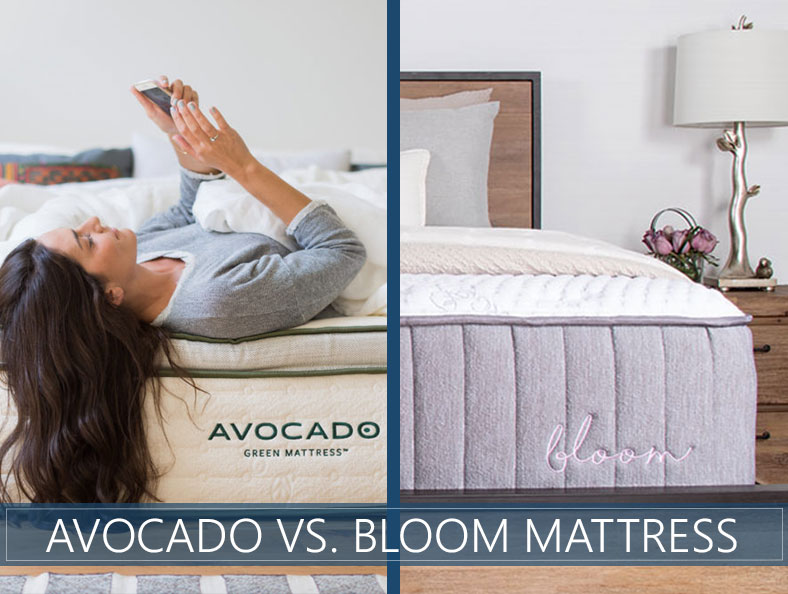 Our comparison of Avocado and Bloom bed
