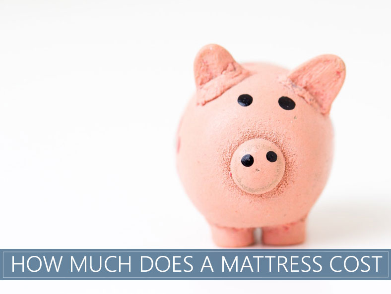 everything you need to know about a price of bed