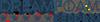 Logo Dreamfoam Bedding