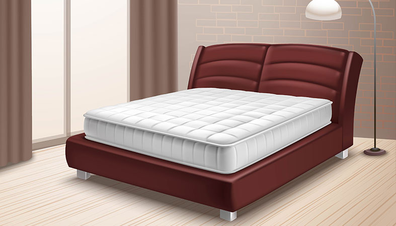illustration of the bed