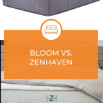 Zenhaven Vs. Bloom