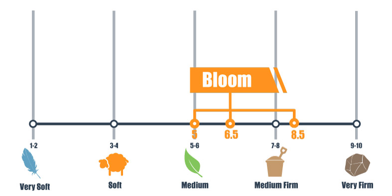 firmness scale for bloom bed