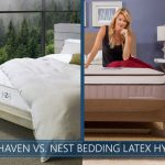 our analysis of zenhaven and nest bedding latex hybrid