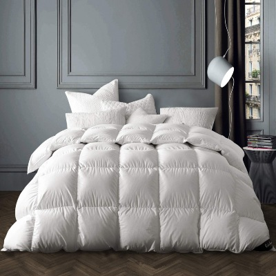 product image of Globon Winter White Goose Down Comforter