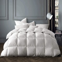 small product image of Globon Winter White Goose Down Comforter