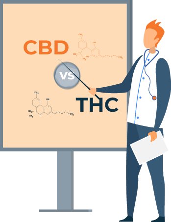 Difference Between CBD and THC Illustration