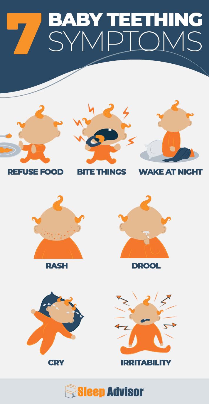 7 Baby Teething Symptoms Infographic
