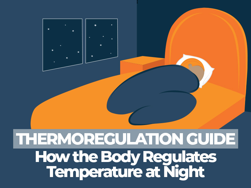 Thermoregulation Guide