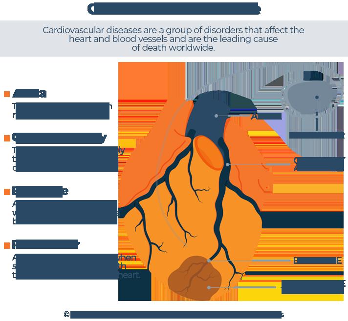 Illustrated Cardiovascular Disease