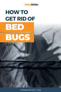 How To Remove Bed Bugs Home Remedy
