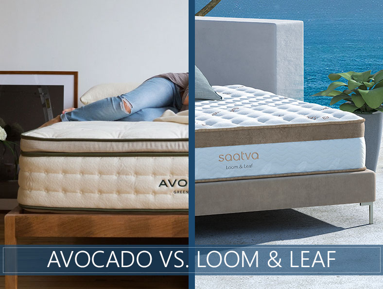 Loom and Leaf vs Avocado Comparison