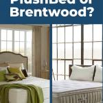 Plushbeds Vs. Brentwood Cedar