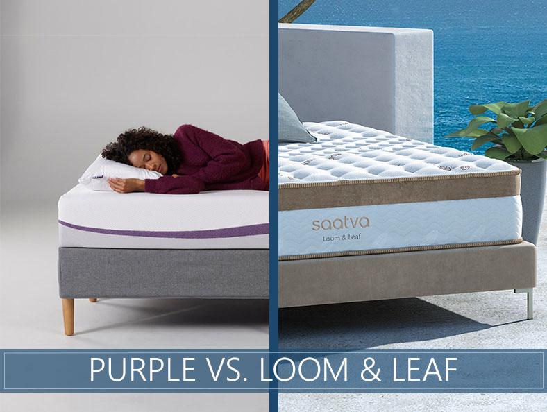 Purple vs Loom and Leaf Comparison