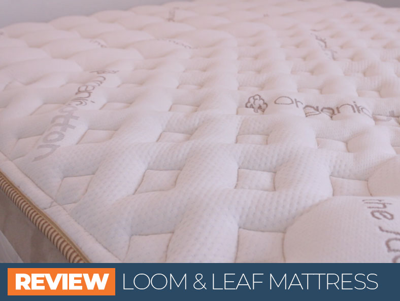 our loom and leaf overview