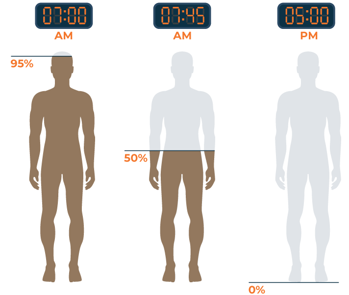 How Long Does Caffeine Stay In Your Body
