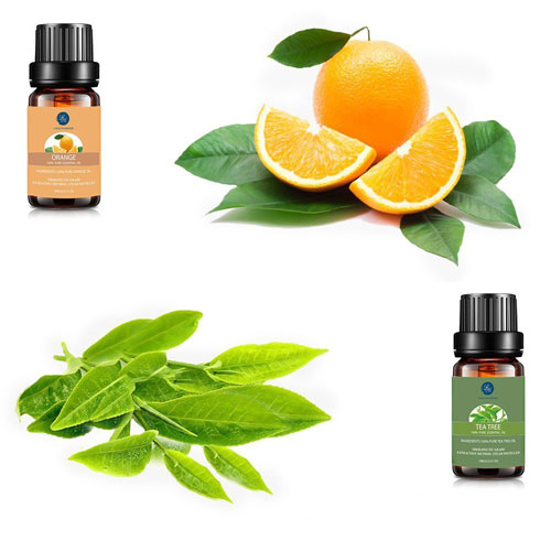 product image of the essential oils
